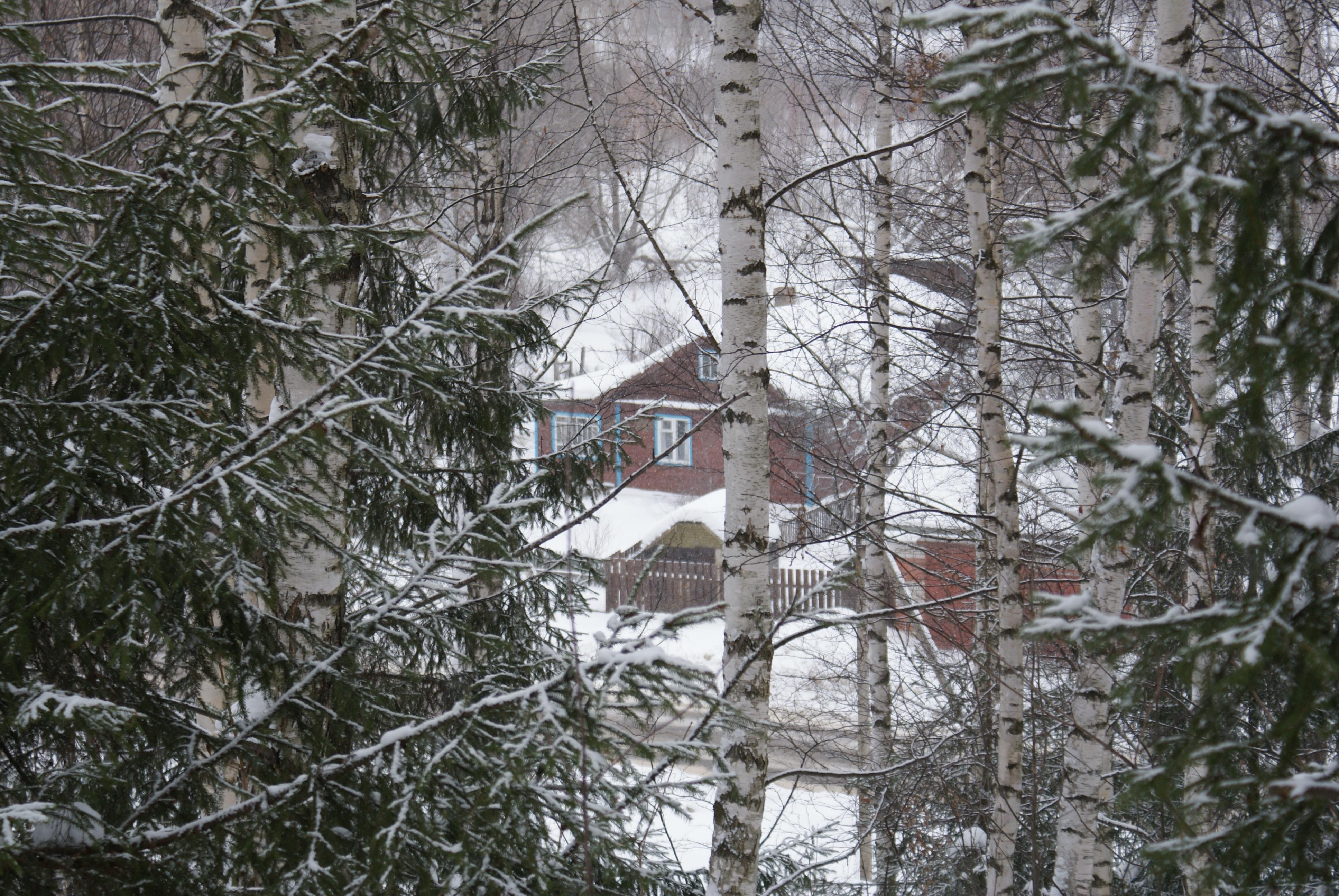 Переславский домик